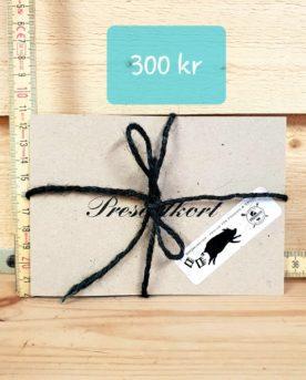 Presentkort 300 kr